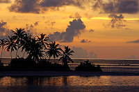 Silhouetted palm lined beach at sunrise, Maldives.