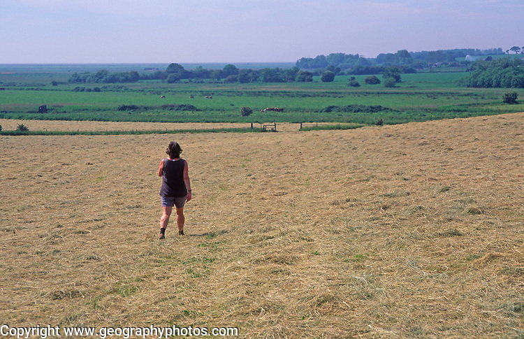 AREKJ4 Woman walking across field of freshly cut summer hay and blue sky, Burrow Hill, Suffolk, England