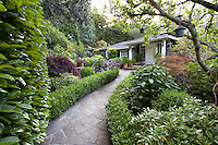 Flagstone path entry through garden of foliage shrubs framed by hedge and tree