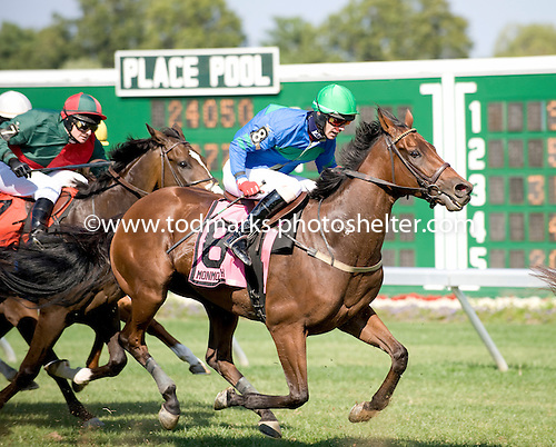 Easy Red does it again, this time in the Metcalf Memorial at Monmouth.