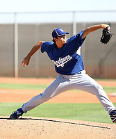 Shawn Tolleson - Los Angeles Dodgers - 2010 Instructional League.Photo by:  Bill Mitchell/Four Seam Images..
