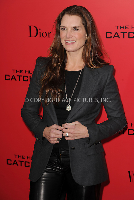 WWW.ACEPIXS.COM<br /> November 20, 2013...New York City<br /> <br /> Brooke Shields attends a premiere of 'The Hunger Games: Catching Fire' on November 20, 2013 in New York City.<br /> <br /> Byline: Kristin Callahan/Ace Pictures<br /> <br /> ACE Pictures, Inc.<br /> tel: 646 769 0430<br />       212 243 8787<br /> e-mail: info@acepixs.com<br /> web: http://www.acepixs.com
