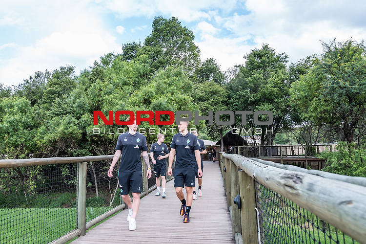 07.01.2019, Lion &amp; Safari Park, Broederstroom, Kalkheuvel, RSA, TL Werder Bremen Johannesburg Tag 05<br /> <br /> im Bild / picture shows <br /> Joshua Sargent (Werder Bremen #19), Felix Beijmo (Werder Bremen #02), <br /> <br /> Teil der Spieler besucht am 5. Tag des Trainingslager eine gef&uuml;hrte Tour im Lion &amp; Safari Park, <br /> <br /> Foto &copy; nordphoto / Ewert