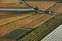 Europe/Europe/France/Midi-Pyrénées/46/Lot/Crayssac: Vignoble AOC Cahors de la vallée du lot   et culture sous serre depuis le Col de Crayssac