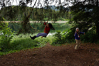 Watching bears and swinging from a rope swing at the camp site at Moser Island. Ground truthing expedition by Bob Christensen, Richard Carstensen, Keynon Fields and Eric Ringler, to see investigating past and proposed timber projects in the Tongass National Forest.  Looking at the past and trying to determine the effect of proposed cuts..The group downloads information that was collected from field notes, pictures and information from wireless GPS units they wear in their hats as they hike through the forest and estuaries.   They are mapping the forest, uncut, proposed cut and old logging sites to see what is there..