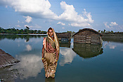 55 year old Urmila Devi poses for a photpgraph, behind her is the flooded farm land and abondoned huts. She survives by selling toddy, the occupation she had to take over from her husband who is unable to walk as he fell from a tree. The recent floods swept away her house, and the structure of the house is still under water. She received very little relief from the government and the a loan of Rs. 50,000 (US $1,265) is still due to the money lender. Photographer: Sanjit Das