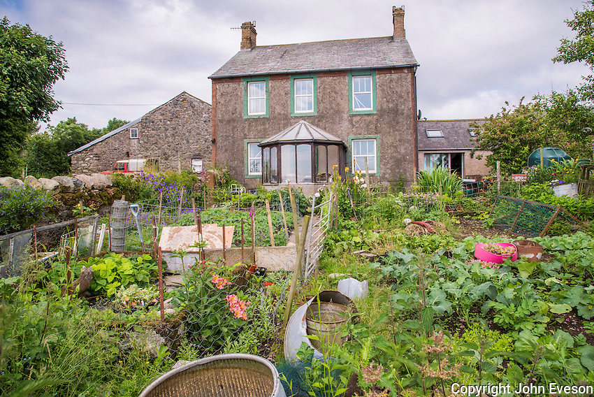 Vegetable garden and farmhouse, Millom, Cumbria.