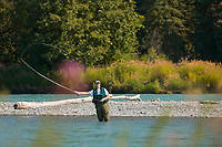 Fly fishing for red salmon on the Kenai River, Kenai Peninsula, Alaska