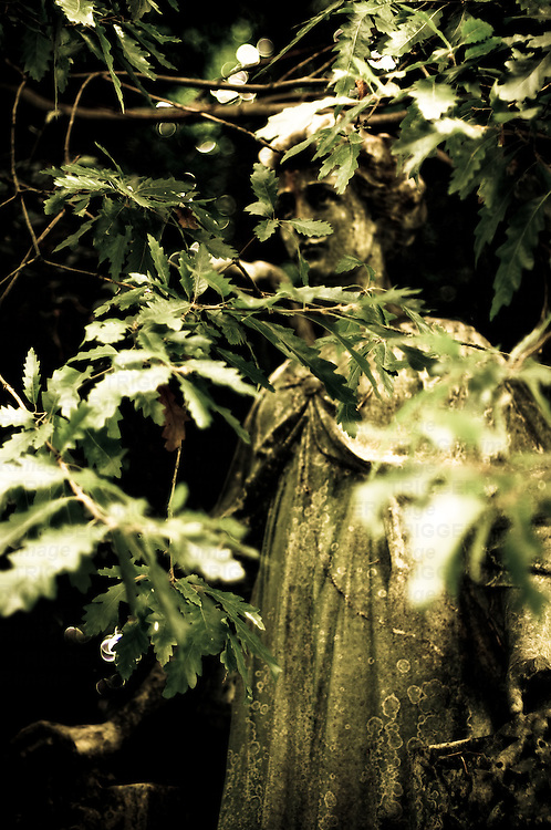 Female statue partly obscured by leaves in cemetery