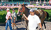 Legal Punch winning at Delaware Park on 8/22/15