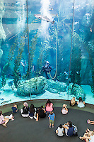 Aquarium of the Pacific, Long Beach, California. Greater Los Angles area.