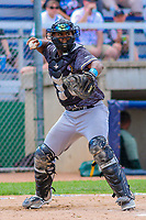 Quad Cities River Bandits catcher Chuckie Robinson (20) during a Midwest League game against the Beloit Snappers on June 18, 2017 at Pohlman Field in Beloit, Wisconsin.  Quad Cities defeated Beloit 5-3. (Brad Krause/Krause Sports Photography)