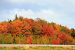 Autumn splendor.  Images of The Canadian Maritime Provinces of Nova Scotia and Prince Edward Island.
