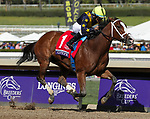 November 2, 2019: Covfefe, ridden by Joel Rosario, wins the Breeders' Cup Filly & Mare Sprint on Breeders' Cup World Championship Friday at Santa Anita Park on November 2, 2019: in Arcadia, California. Casey Phillips/Eclipse Sportswire/CSM
