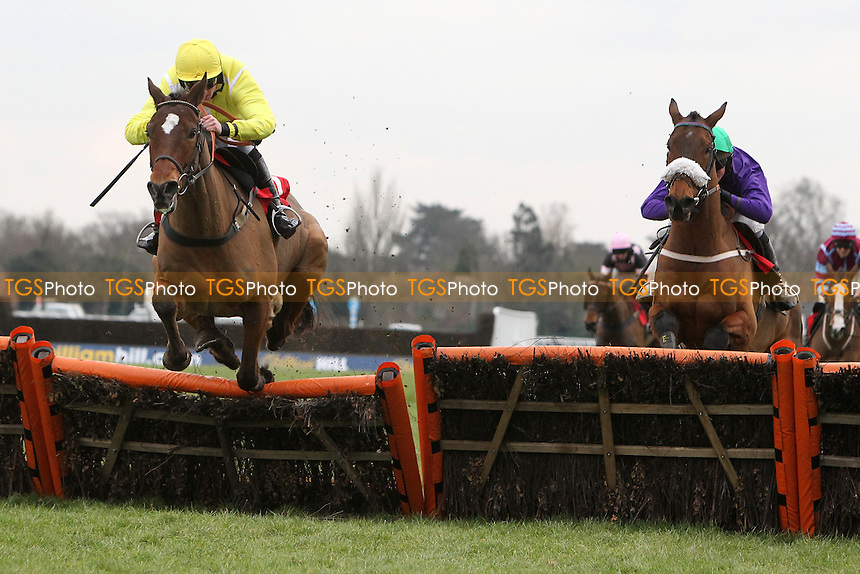 Race winner Farbreaga ridden by Jeremiah McGrath (L) in jumping action ahead of Hatters River ridden by Harry Derham in the Racing UK Novices Handicap Hurdle - Horse Racing at Kempton Park Racecourse - 08/02/13 - MANDATORY CREDIT: Gavin Ellis/TGSPHOTO - Self billing applies where appropriate - 0845 094 6026 - contact@tgsphoto.co.uk - NO UNPAID USE.