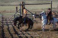 kickn up a little dust Cowboys working and playing. Cowboy Cowboy Photo Cowboy, Cowboy and Cowgirl photographs of western ranches working with horses and cattle by western cowboy photographer Jess Lee. Photographing ranches big and small in Wyoming,Montana,Idaho,Oregon,Colorado,Nevada,Arizona,Utah,New Mexico.