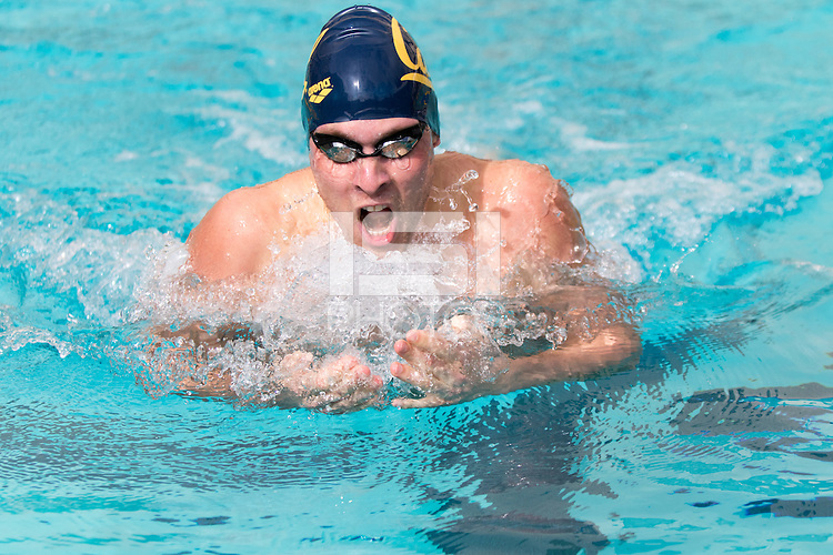 BERKELEY, CA - Feb. 18, 2017: Cal's Zach Stevens swims in the heat 1 of the Men 200 Yard Breaststroke.  Cal Men's Swimming and Diving competed against Stanford at Spieker Aquatics Complex.