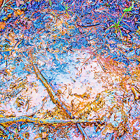 A colorful artistic rendering of a mud puddle.