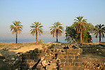 Israel, Tel Beth Yerah, situated at the point where the Jordan river exits the Sea of Galilee