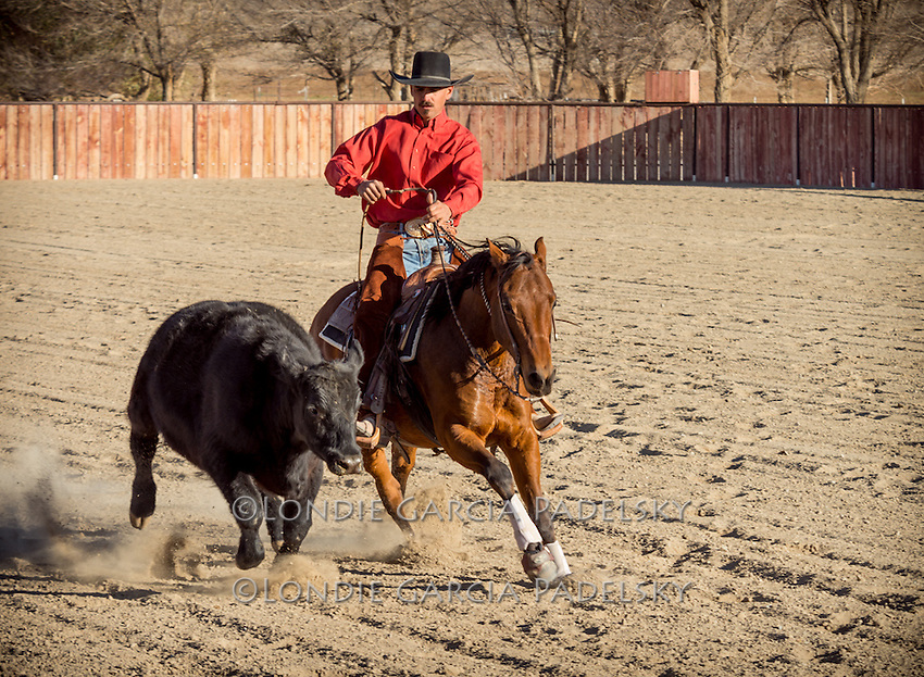 2013 National Reined Cow Horse Association Snaffle Bit Futurity Open Champion Nick Dowers working one of his horses at the family-Triple D Ranch in Dyer, Nevada