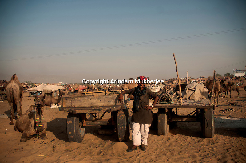 A camel trader at Pushkar fair ground. Rajasthan, India. Arindam Mukherjee
