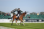 Stamford, Lincolnshire, United Kingdom, 5th September 2019, Michael Owen (GB) & Bradeley Law during the Dressage Phase on Day 1 of the 2019 Land Rover Burghley Horse Trials, Credit: Jonathan Clarke/JPC Images
