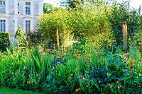 France, Loir-et-Cher (41), Cheverny, château de Cheverny, le Jardin des apprentis, massif avec Eremurus, hémérocalles, tabac, tagètes, dahlia...