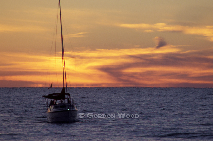 Sailboat with Safety Lights on Returning to Port Against Golden Sunset