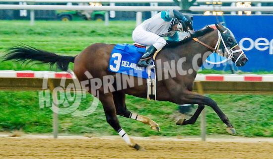 Eldaafer winning The Carl Hanford Memorial Stakes at Delaware Park on 9/8/12