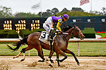 HOT SPRINGS, AR - APRIL 13:  Fantasy Stakes at Oaklawn Park on April 13, 2018 in Hot Springs, Arkansas. #3 Tahoe Dream with jockey Alex L. Canchari. (Photo by Ted McClenning/Eclipse Sportswire/Getty Images)