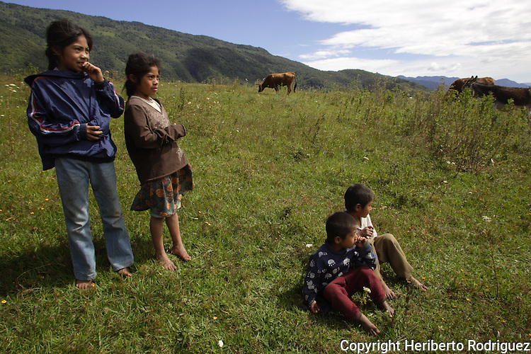 Triqui Native children play around in the surrooundings of the Yosoyuxi village, in the Triqui region of Oaxaca, November 18, 2005. The political violence has been increased by the paramilitary groups like UBISORT in the Triqui region, where they ambushed an humanitarian caravan and killing two people on APril 27, 2010.  Photo by Heriberto Rodriguez