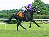 Dona Elba winning at Delaware Park on 7/26/17