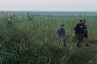 Illegal migrants walk behind the razor wire border fence they plan to cross on the border between Hungary and Serbia near Roszke (about 174 km South of capital city Budapest), Hungary on August 30, 2015. ATTILA VOLGYI