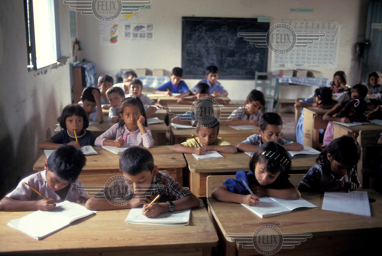 Children in a primary school class.