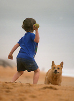 A boy throws a ball for his dog on the beach in Flagler County, FL. (Photo by Brian Cleary/www.bcpix.com)
