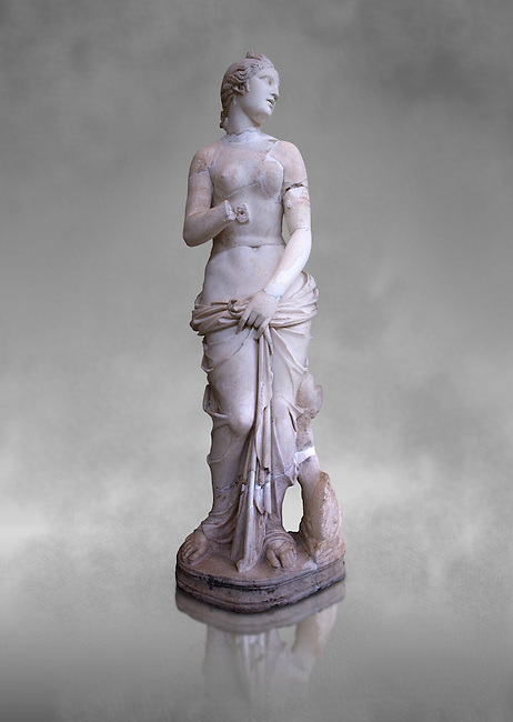 The Roman Venus Statue, the Goddess of Love, follows the style of a modest Aphrodite, known by other Roman replicas are copies of Ttththird century BC Hellenistic Greek statues now lost. Dated circa 1st quarter of second century AD, the Venus statue was excavated from the Odeon of Carthage. The National Bardo Museum, Tunis. Against a grey art background.