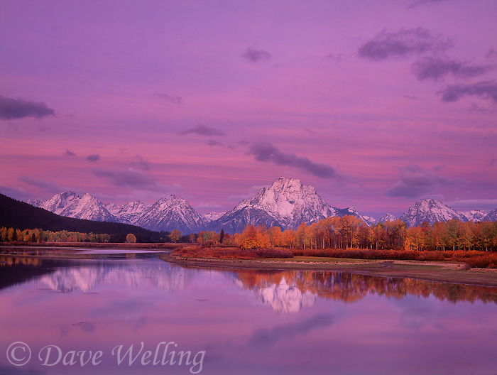 749450003 dawn alpenglow lights up mount moran and the teton range on a fall morning at oxbow bend of the snake river in grand tetons national park wyoming