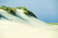 Weißdüne, Düne, Sanddüne an der Nordsee, Baltrum