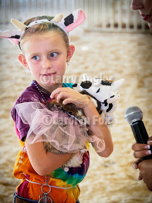 Livestock beauty pageant.<br /> <br /> Saturday, Day 3 of the 79th Amador County Fair, Plymouth, Calif.<br /> <br /> Local cowboy ranch rodeo, livestock beauty pageant, youth tractor rodeo, Mutton Bustin' finals<br /> <br /> <br /> #AmadorCountyFair, #PlymouthCalifornia,<br /> #TourAmador, #VisitAmador