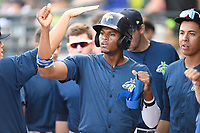 Shortstop Shervyen Newton (3) of the Columbia Fireflies is greeted in the dugout after scoring a run in a game against the Augusta GreenJackets on Saturday, June 1, 2019, at Segra Park in Columbia, South Carolina. Columbia won, 3-2. (Tom Priddy/Four Seam Images)