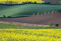 Springtime<br />