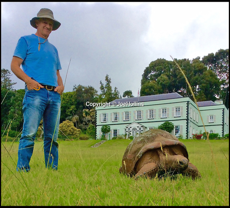 BNPS.co.uk (01202 558833)<br /> Pic: JoeHollins/BNPS<br /> <br /> Island vet Joe Hollins with Jonathan the tortoise before the clean.<br /> <br /> The world's oldest living animal is starting over with a clean sheet at 184 years old - after a vet gave him his first ever bath. <br /> <br /> Jonathan the giant tortoise has come out of his shell after centuries of grime were carefully scrubbed off his back with a loofah, soft brush, and surgical soap.<br /> <br /> The famous reptile was over the moon with his make over and is now ready for a VIP visit to his historic island home.