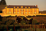 Sunrise light on Domaine Carneros Carneros Region Napa County, California