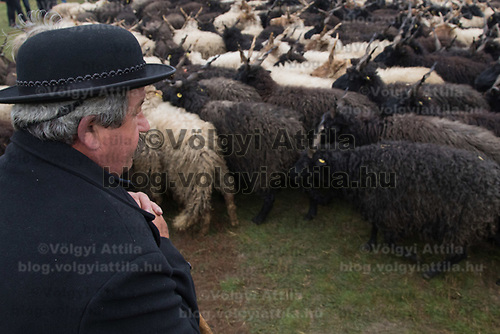 A sheperd observes a flock of racka sheep during a celebration of the end of the grazing season in the Great Hungarian Plains in Hortobagy, 200 km (124 miles) east of Budapest in Hortobagy, Hungary on Oct. 21, 2017. ATTILA VOLGYI