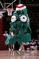 10 January 2008: The Stanford Tree during Stanford's 81-45 win over Oregon State at Maples Pavilion in Stanford, CA.