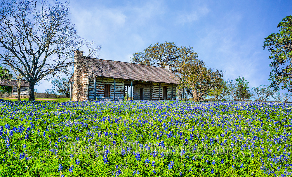 Loved this old log cabin with a field of bluebonnets in front.  We thought wow how perfect can it get, an old historic log house with a field of bluebonnet wildflowers as part of the landscape