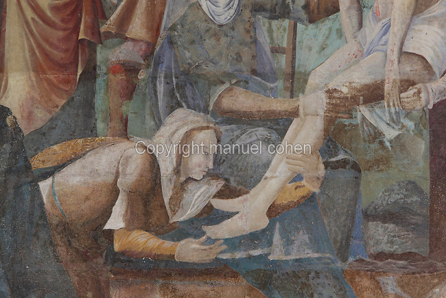 Detail from the Descent from the Cross, with Mary Magdalene kissing Christ's feet, Deposition fresco, Chapter House, Fontevraud Abbey, Fontevraud-l'Abbaye, Loire Valley, Maine-et-Loire, France. The Chapter House was built in the 16th century and its walls were painted in 1563 with frescoes of scenes from Christ's Passion by the Anjou artist Thomas Pot. The abbey itself was founded in 1100 by Robert of Arbrissel, who created the Order of Fontevraud. It was a double monastery for monks and nuns, run by an abbess. Picture by Manuel Cohen