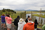 Tourists looking for wildlife in Hayden Valley, Yellowstone National Park, Wyoming