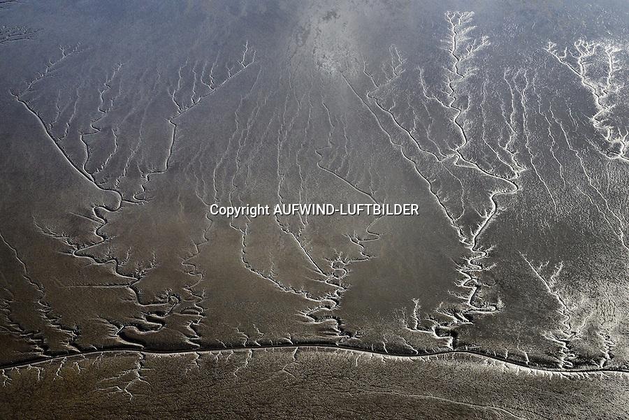 Erdhaut, Priele und Brackwasserwatt im Muehlenberger Loch