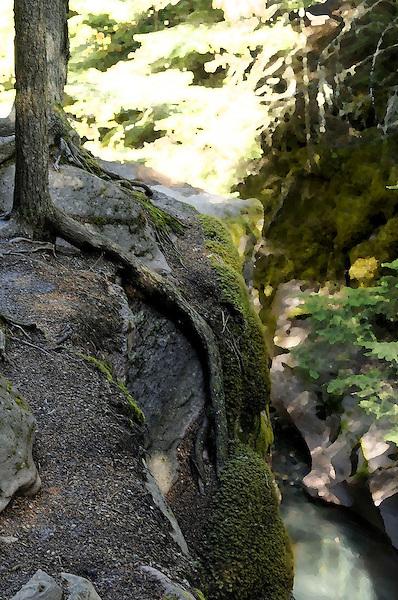 Lineage Descent. Root Rock Face, Glacier National Park. Marc Caryl Nature Photos.